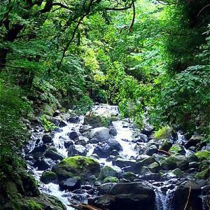 静岡小山町 頼光対面の滝へ行ってきた