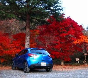 茨城高萩市 花貫渓谷の紅葉がキレイ