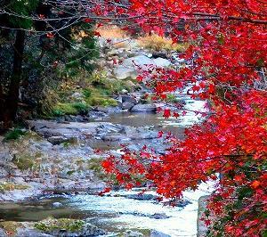 茨城高萩市 名馬里ヶ淵の紅葉がキレイ