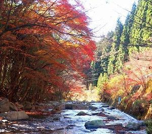北茨城市 猿ヶ城渓谷千猿の滝へ行ってきた