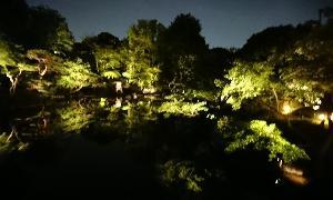 水面の夜の。