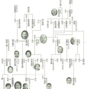 安倍晋三の暴挙を許したのは自由民主党のシステムの問題
