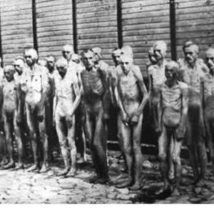 ホロコーストはドイツだけではない