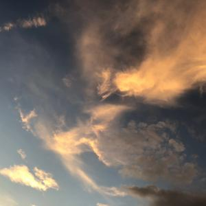 龍雲いろいろ。