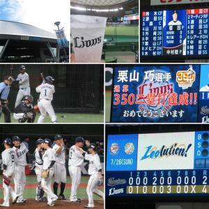 野球観戦(埼玉西武vs千葉ロッテ)