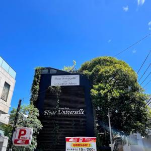 【東京都】広尾のツリーハウスカフェ!レ・グラン・ザルブル