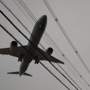 今年のGW~④伊丹の飛行機