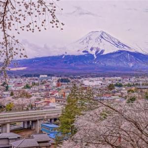 新倉山浅間公園で桜と五重塔と富士山を撮影してきた