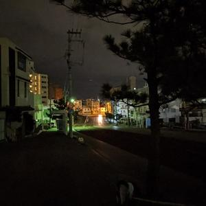 南極よりも寒いかもしれない沖縄です