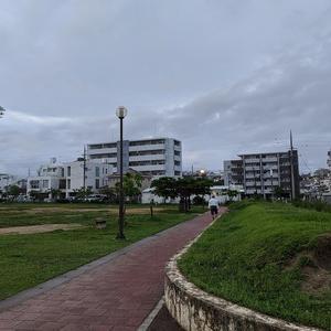 雨上がりの早朝散歩はぁ~