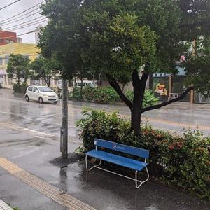 今朝も雨の中でのスタートとなりました