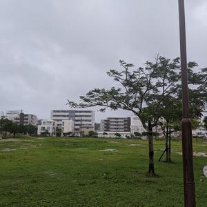 戻り台風6が雨はぁ~