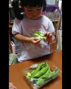 そら豆食べれるかな。