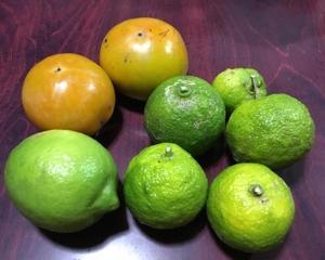 カキ、ユズ、レモン。
