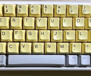 静電容量式NiZ plum Atom66 + Majestouch MINILA用2色成型キーキャップ