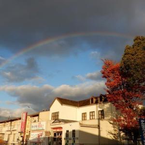 きれいな虹が出ました!