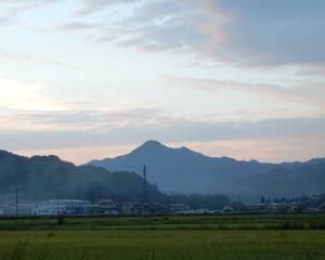 カメラ散歩・・・野の花ウォッチング(9月)