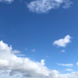 ◇六星ぷらすまいなす運気予報8/11【戌】のとき