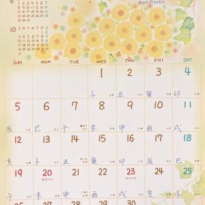 ◆2021年9月スタートです(*^・ェ・)ノ