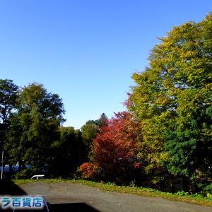秋晴れになった北見です(*'▽')【サイトリニューアル準備中】