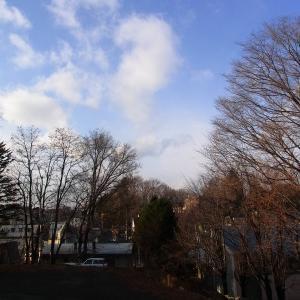 昨日の最高気温10.4℃!12月なのにあたたかい(*'▽')【サイトリニューアル準備中】