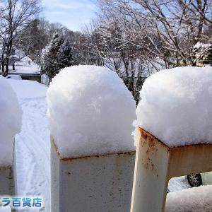 12日ぶりの積雪14cmになった北見です(^^)/【ショップきたみさん!】新装開店
