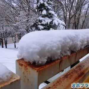 冬景色に戻った北見の朝です。【ショップきたみさん!】新装開店