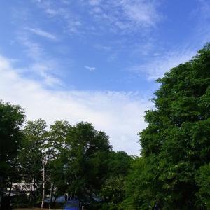 オホーツクブルーの青空と夏っぽい白い雲が浮かぶ北見です(*'▽')【ショップきたみさん!】JAきたみらいメロンをご案内中