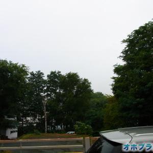深夜から雨が続いている北見です☂【ショップきたみさん!】玉ねぎ・じゃがいも・3種のレトルトカレーをご案内中