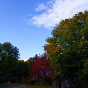 秋晴れの北見です〓【ショップきたみさん!】玉ねぎ・じゃがいも・3種のレトルトカレーをご案内中