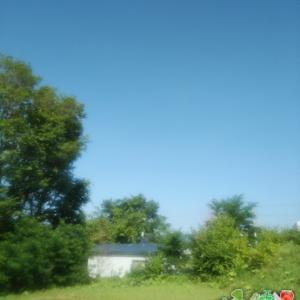 連日30℃越えの北見、暑さに負けそうです(´;ω;`)ウゥゥ