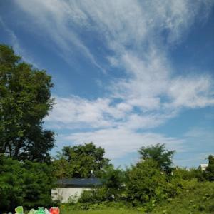 雨が続く予報が出ている北見です・・・蒸し暑くなりますね(;´・ω・)