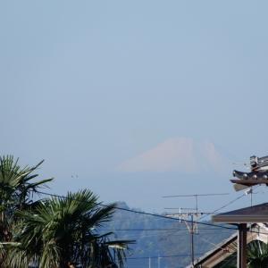 富士山冠雪(令和元年)