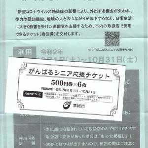 がんばるシニア応援チケット(常総市)