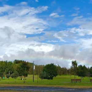 束の間の虹