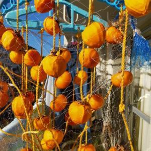 干し柿作り2020