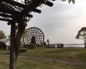 伊庭内湖の生態調査 2019年8月18日