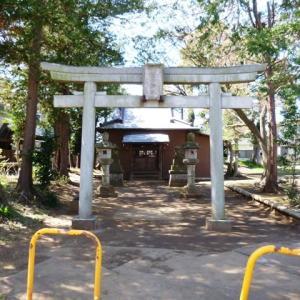 本土寺参道の桜