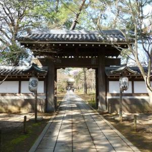 雨上がりの東漸寺
