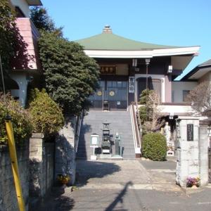 2019年慶林寺の河津桜(1)