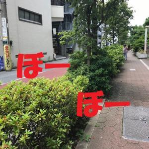 久しぶりに外出しましたー!と言っても大崎、徒歩圏内だけれど・・・+すんごく自由な裂き織りマット!