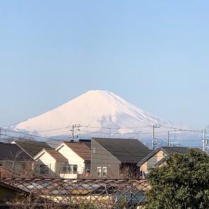 やっぱり富士山はこの時期雪をかぶっていないとねー!!+草花染め会員千葉のSさんはつづれ達人!!