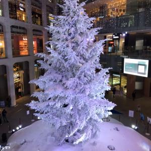 本日夜の12時が最終締め切り!!のプレゼントマフラー!!+KITEEのクリスマスイルミネーション