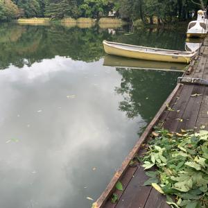 台風被害は松原湖ありません。