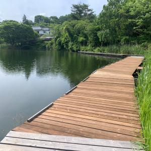 長湖桟橋修繕と冷酒