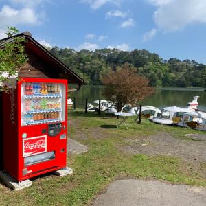 コーラの販売機