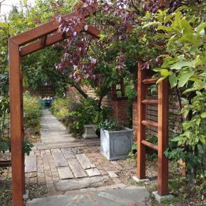 梅木あゆみさんの自宅のお庭工事を見学させていただきました。