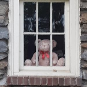 窓辺のテディベア