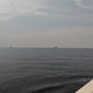 日本海大物釣り日記 74