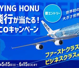 ANAは、総2階建てエアバスA380型機 「FLYING HONU」遊覧飛行が当たるキャンペーンを開催!